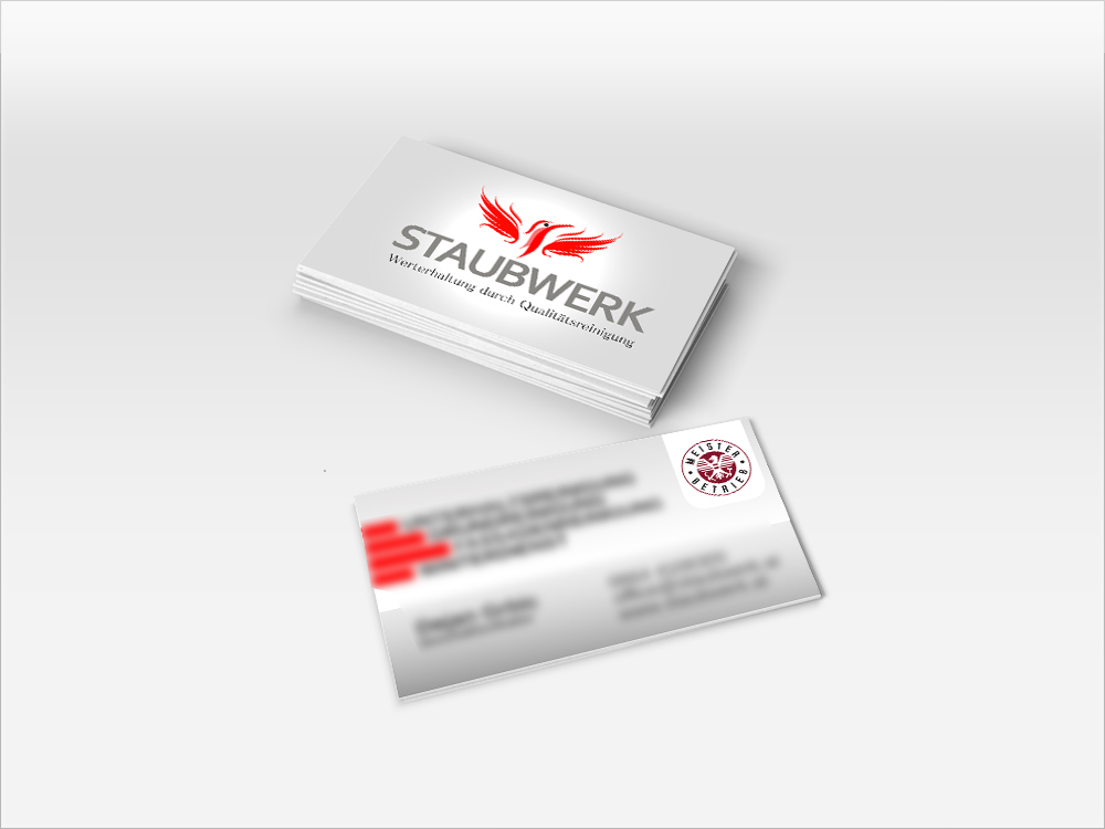 logo-staubwerk-mock